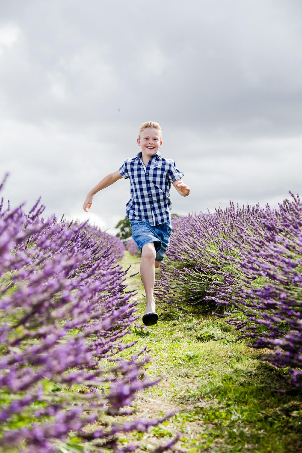 Boy photograph at lavender farm